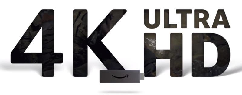 4K動画への対応の有無