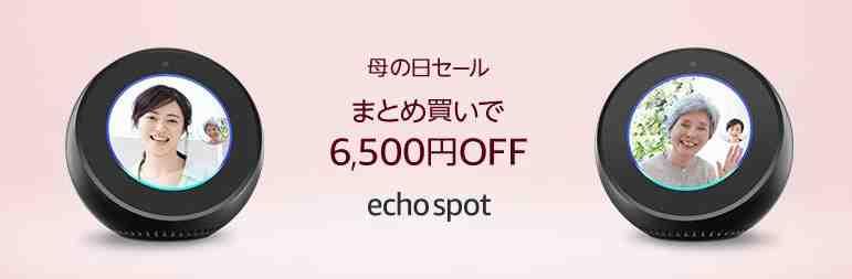 Echo まとめ買いキャンペーン