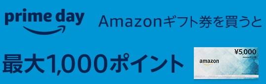 ②配送タイプ5,000円購入で最大1,000円